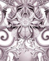 Europa Mica 5003 image detail